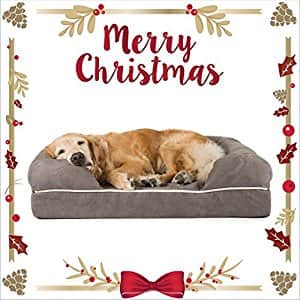Friends Forever Large Memory Foam Dog Bed for $69.99
