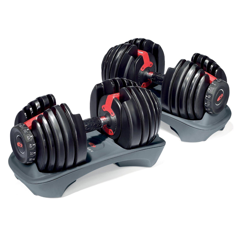 Bowflex SelectTech 552 Dumbbells - $210
