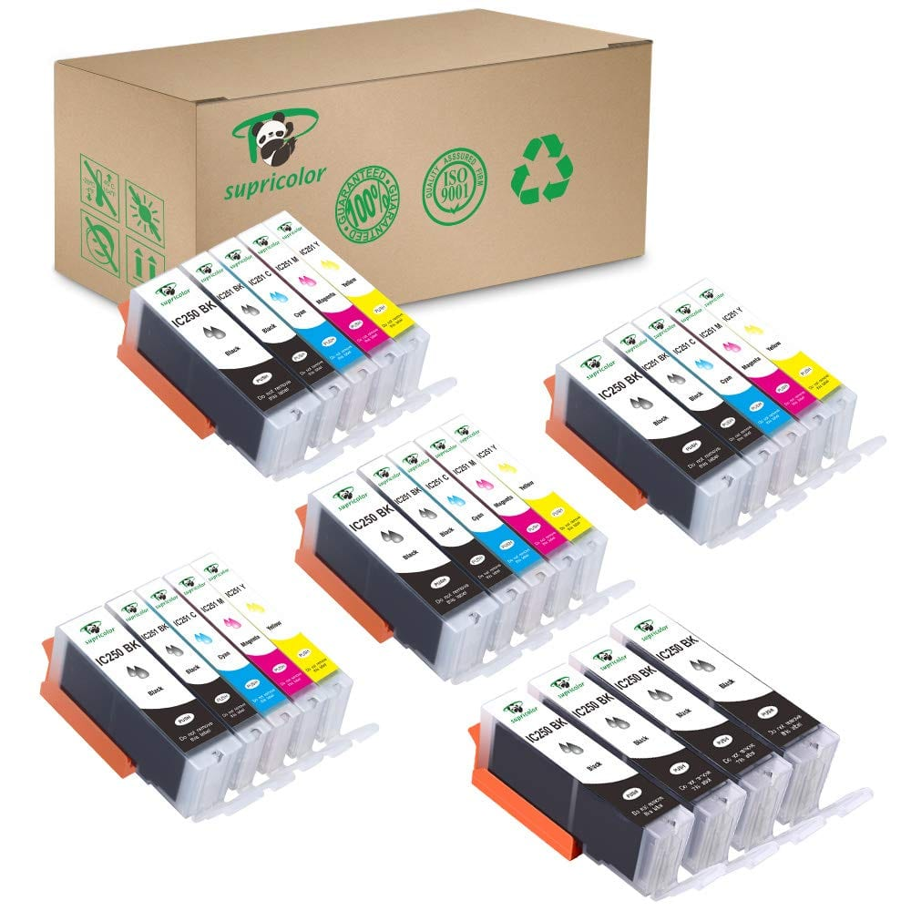 24 Pack Canon PGI 250XL CLI 251XL Ink Cartridges $ 13.99 (4Sets + 4BK) Work for Canon MX922 MG5520 MG6620 $12.99