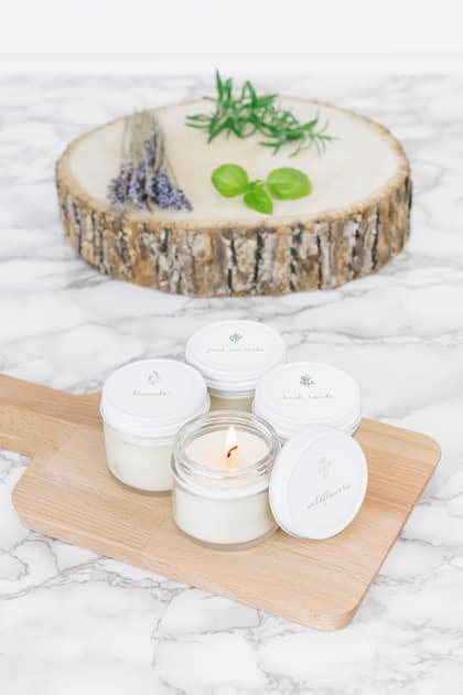 Antique Candle Co. 4-pack Plant Lady Sample Pack Candles (2 ounces) $16.80 ($4.20 each) & More + Free Shipping