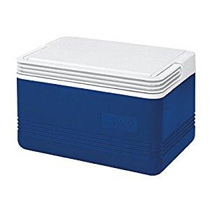 Igloo 6 Can Capacity, 5 Qt Cooler $9.67
