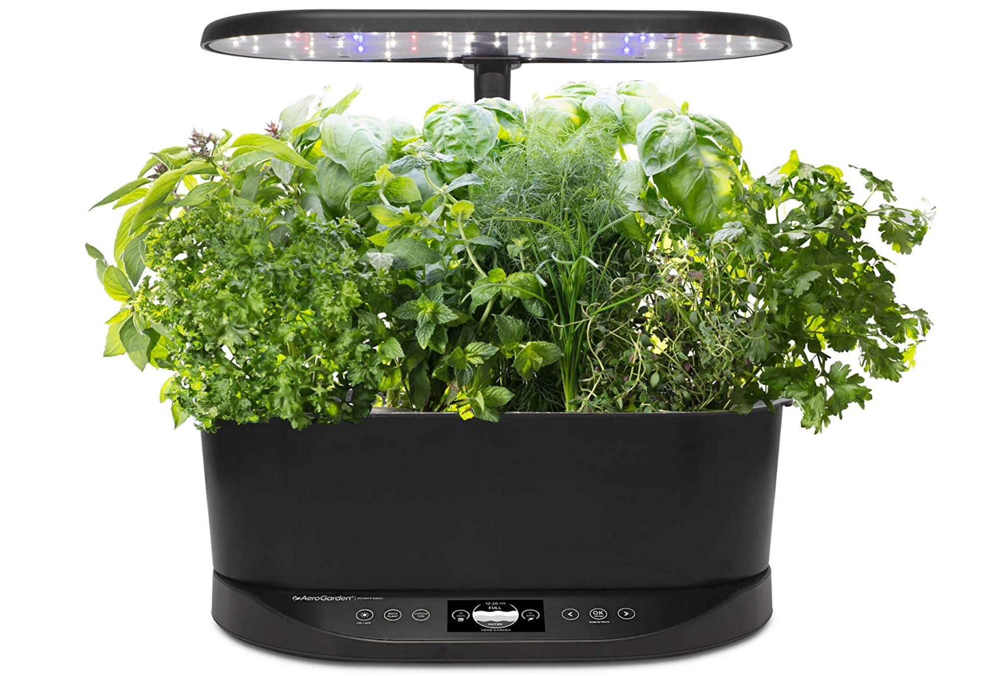 Amazon: AeroGarden Bounty Basic-Black Indoor Garden + FS $159.95