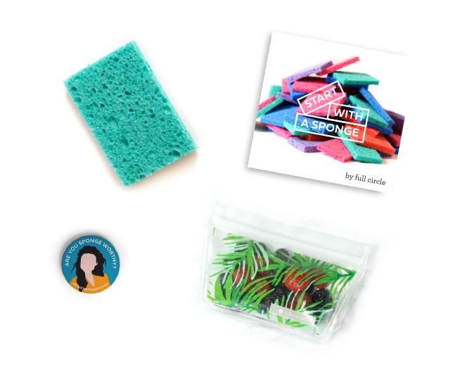 Free Start with a Sponge Kit
