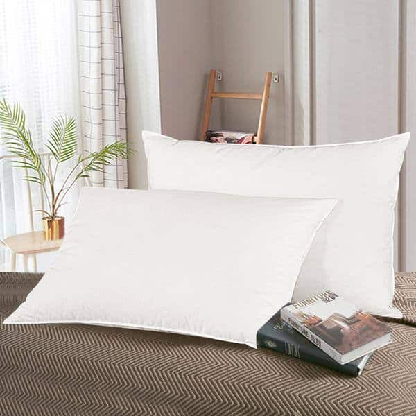 2 Pack Goose Feather Pillows w/ 100% Cotton Cover, Standard/Queen from $25 + Free Shipping
