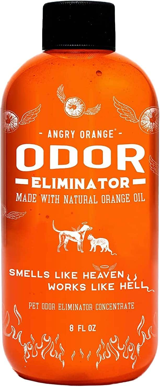 8-Oz Angry Orange Pet Odor Eliminator Concentrate for Dog and Cat Urine (Makes 1-Gallon) $13.80 w/ S&S + Free Shipping w/ Amazon Prime or Orders $25+