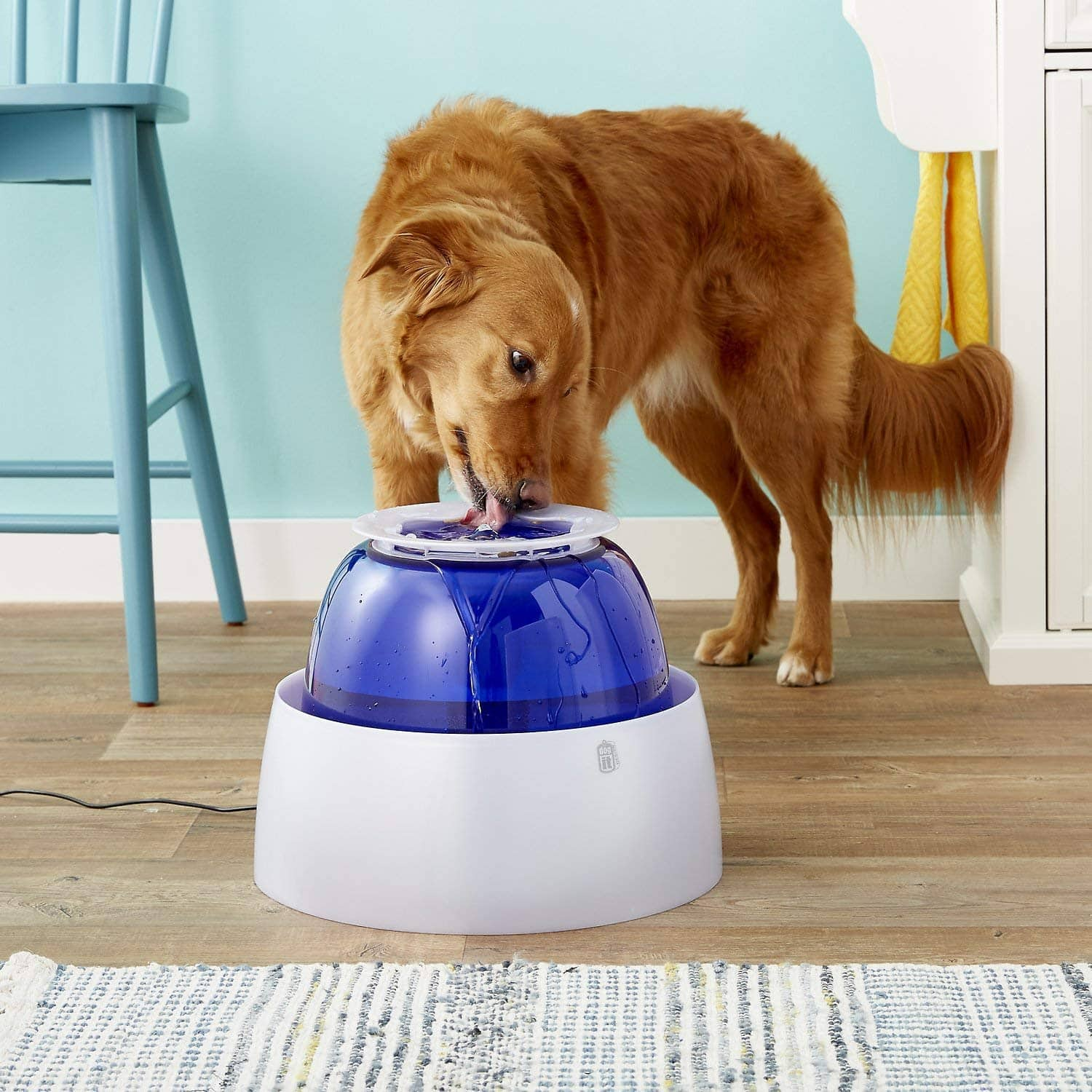 Dogit Design Fresh & Clear Large Dog Filtered Drinking Fountain $11 + Free Shipping $49+