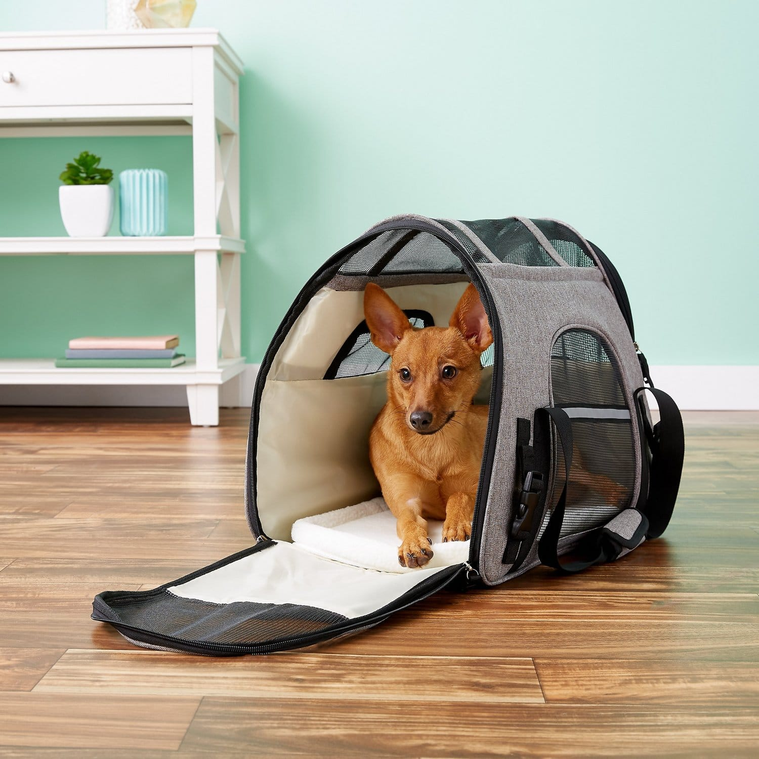 Mr. Peanut's Soft-Sided Airline-Approved Dog & Cat Carrier Bag (Platinum Gray) $14.70 + Free Shipping $49+