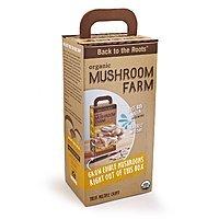 Amazon Deal: Back To The Roots Organic Mushroom Farm