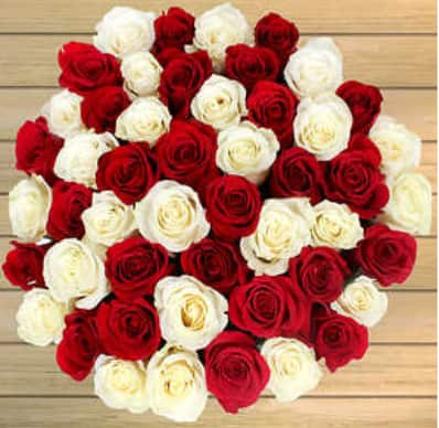 Costco Members: Valentine's Day Roses 50-Count (various colors) $50 + Free Shipping