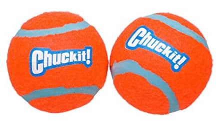 2-Pack Chuckit! Tennis Ball Toy for Dogs (Small) $1