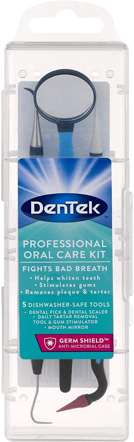 DenTek Professional Oral Care Kit $2.70 w/ S&S + Free Shipping w/ Prime or on $25+