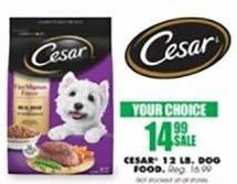Blains Farm Fleet Black Friday: Cesar Dog Food 12 Pound Bag for $14.99