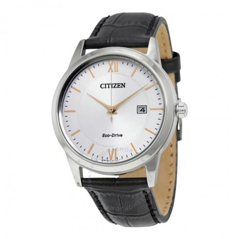 Citizen Eco Drive Men's or Ladies watches - $79.99 Shipped