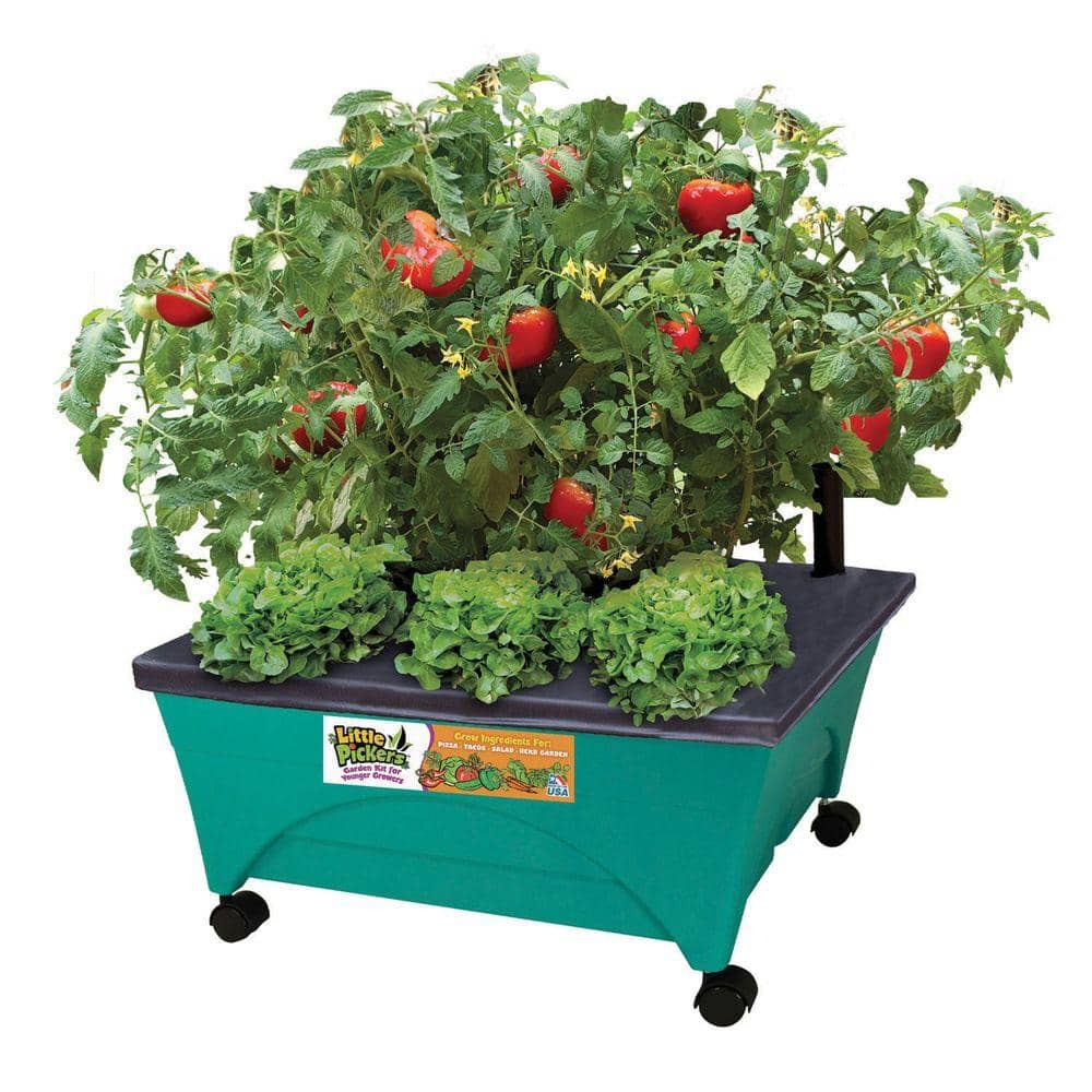 Home Depot & Amazon CITY PICKERS 24.5 in. x 20.5 in. Patio Raised Garden Bed Grow Box Kit with Watering System and Casters in Aquamarine $25 Free Shipping 1-7-18 only