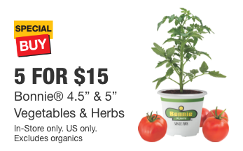 home depot or lowes 5 for 15 herbs or vegetables bonnie 5 plants