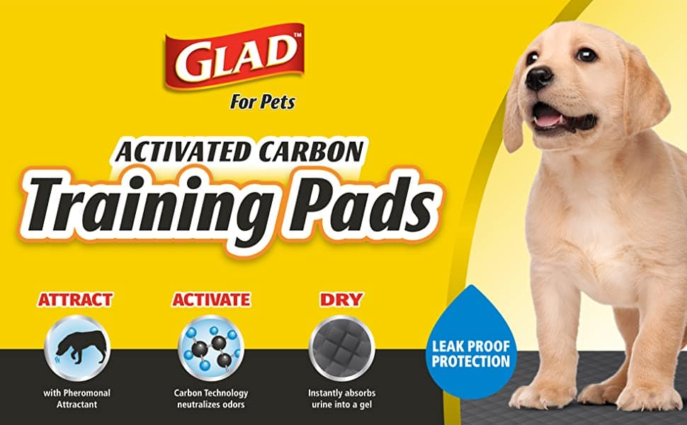 Glad for Pets Black Charcoal Puppy Pads 100 Count as low as $11.34 with subscribe and save and coupon $11.96