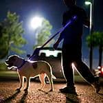 "Dog Leash - Nylon Universal Double Sided LED 58"" Light Up Leash - $5 Shipped"