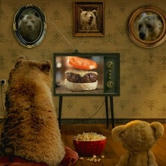 What Do Bears Watch On TV - PS4 Dynamic Theme $0.99
