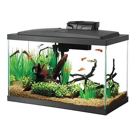 Aqueon 10 Gal LED Aquarium Kit @ Petco Pick up only. $9.08 + tax YMMV