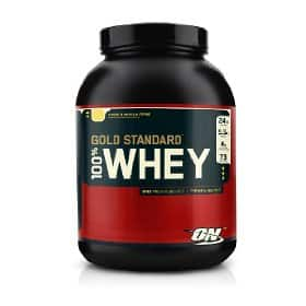 5lb Optimum Nutrition 100% Whey Protein Gold Standard (double rich chocolate or vanilla ice cream) $28 + Free Shipping