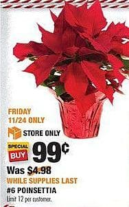 Home Depot Black Friday: 1.5-qt. Live Poinsettia for $0.99