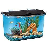 Hawkeye 5 Gallon Starter Aquarium Kit with LED Lighting $  25, free pickup, or free shipping if over $  50 order