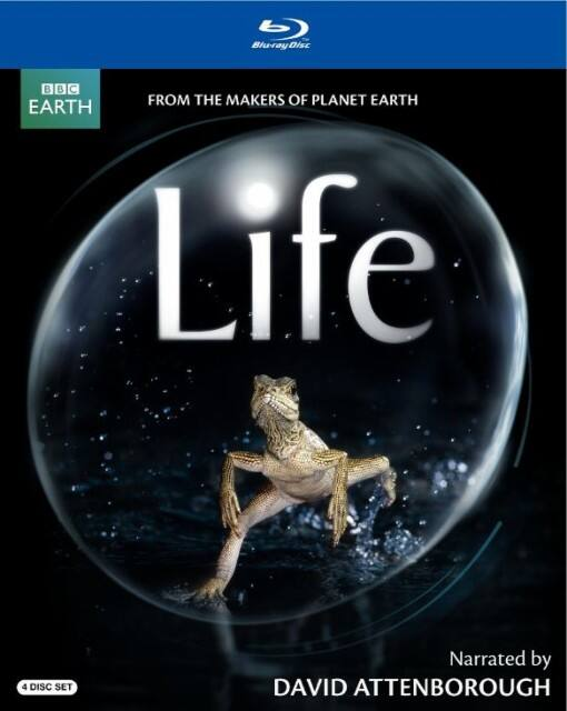 Life: Narrated by David Attenborough (Blu-ray) or The Hunt (Blu-ray) $8.99 Each, Planet Earth: Six-Disc Special Edition (Blu-ray) $13.99 & More + Free Store Pickup @ Best Buy