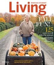 Women's Health - $8.95/2 yrs, Rolling Stone - $12.95/3 yrs, Saveur - $12.95/3 yrs, Fast Company - $16.99/4 yrs, Martha Stewart Living - $19.99/4 yrs, Parents - $16.95/4 yrs