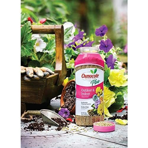 Prime Members: 2-lbs. Osmocote Plus Outdoor & Indoor Plant Food $2.50 + Free Shipping