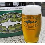 Dogfish Head (beer brewery) online sale - 50% off glassware and 25% off shirts/hats