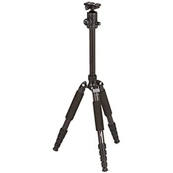 AmazonBasics 63-Inch Lightweight Aluminum Travel Tripod/Monopod with Bag $33.33
