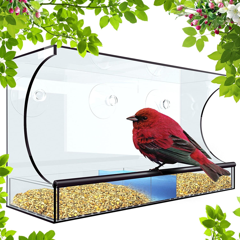 $13.99 XL Window Bird Feeder With 3 Bonus Heavy Duty Hook Suction Cups. FS with prime