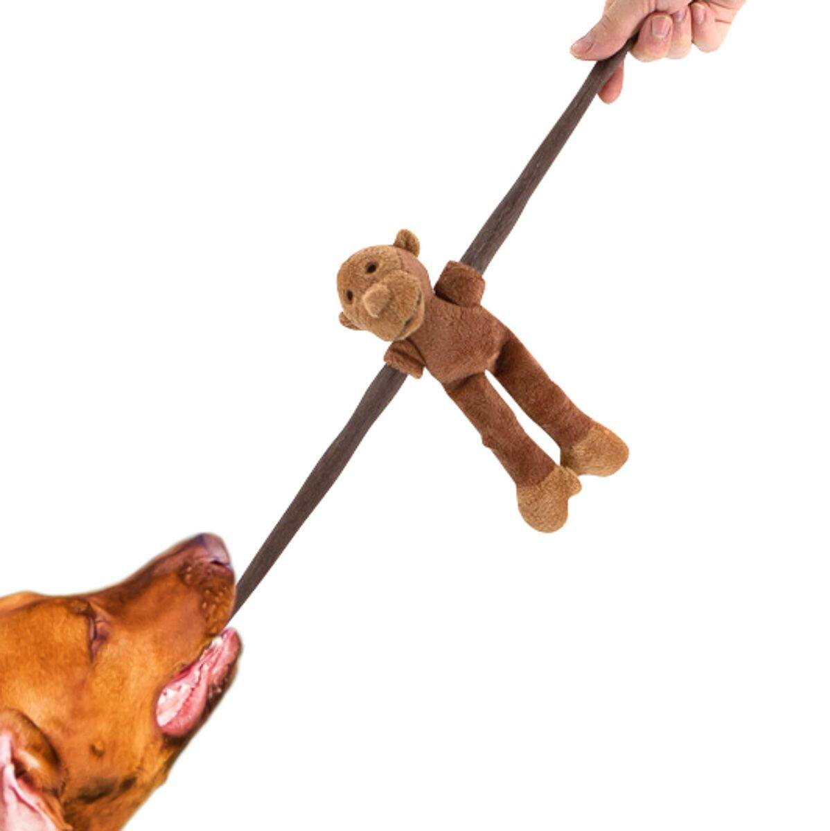 Dog Toys from $2