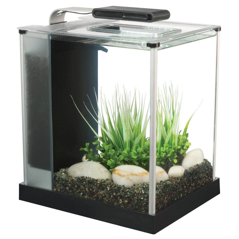 2 6 gallon fluval spec iii aquarium kit page 7 slickdeals net