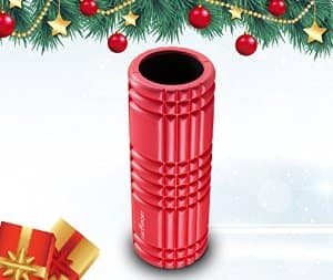 Foam Roller for Physical Therapy & Exercise for Muscle with Soft Massage Roller - $19.99 AC + FS w/Prime @ Amazon