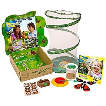 Insect Lore Live Butterfly Growing Kit Gift Box Set  $17