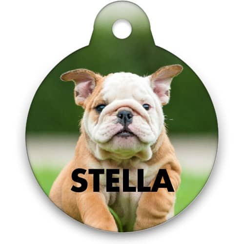 Personalized Dog Tag / Pet Tag for $3.99 shipped