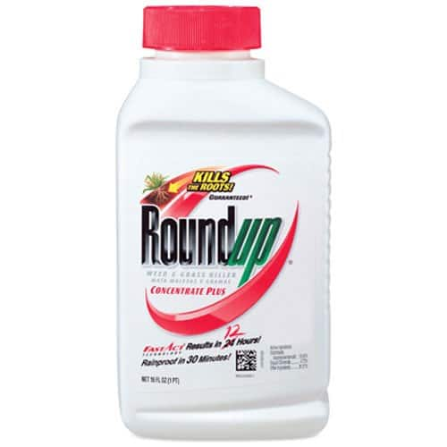 16oz Roundup Weed and Grass Killer Concentrate Plus $3.50 + Free Shipping w/ S&S