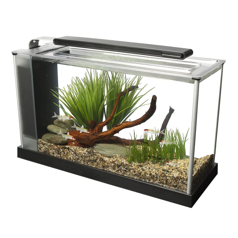 Fluval Spec III and Spec V aquarium fish tank on sale with FS and ebay bucks + get as low as $40.99
