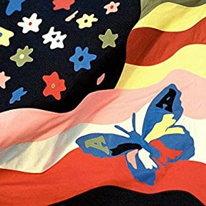 The Avalanches - Wildflower - 2 LP Vinyl $13.13 Prime