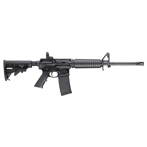 Gun-  Smith & Wesson M&P 15-22 Rifle at Field and Stream $250