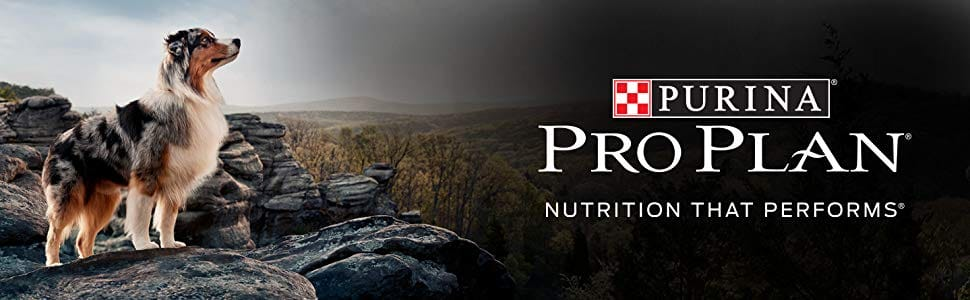 Purina Pro Plan SAVOR on Sale - 35lb bag $30-37 + Stacking discounts for SnS