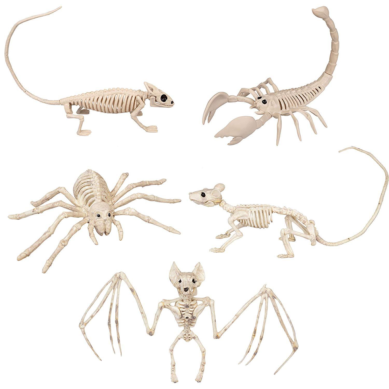 "5-Count 9-15"" Halloween Animal Bones Skeleton Value Pack Decorations $7 AC - Amazon"