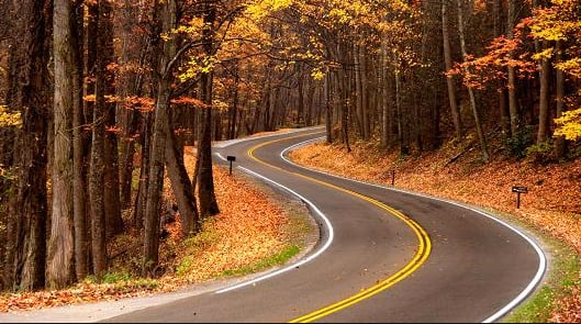 Fall Travel Deals: Wyndham Hotels Up to 20% Off, Hertz Car Rentals  Up to 30% Off & More
