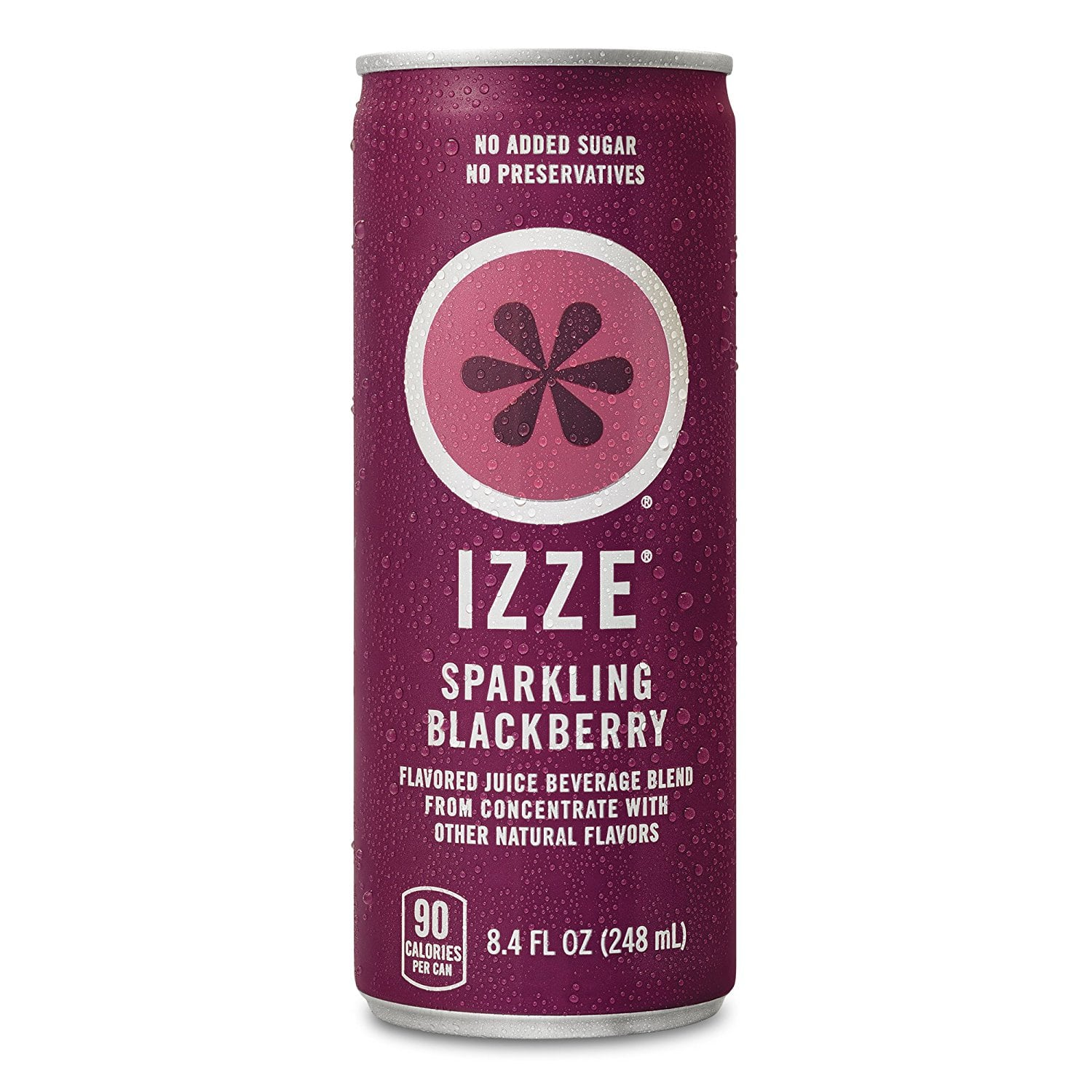 24-Pack of 8.4oz IZZE Fortified Sparkling Juice (Blackberry) $11.70 or less w/ S&S + Free S&H  (& More)