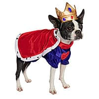 Petco Deal: Dog Halloween Costumes 50% Off at Petco