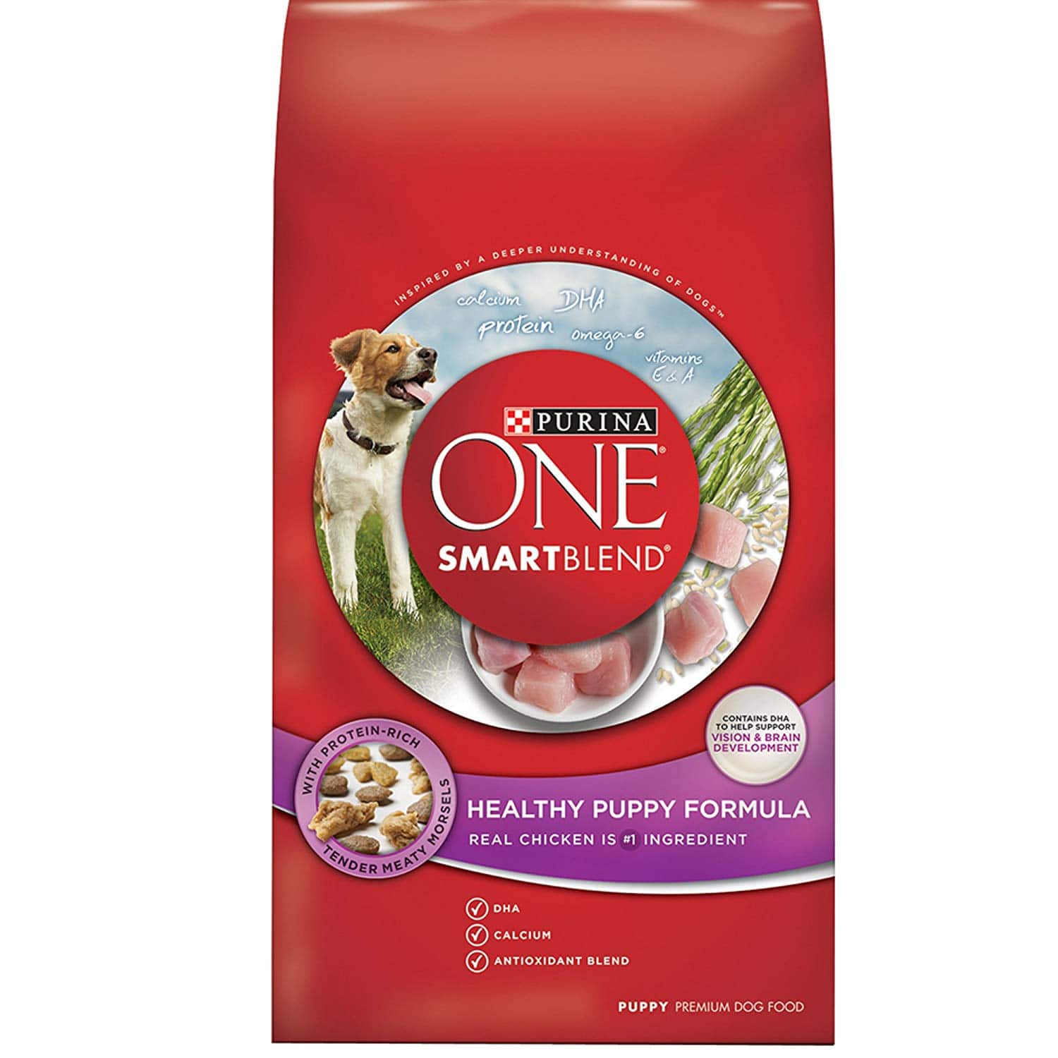 Purina ONE SmartBlend Natural Puppy Dog Food 16.5lbs $12.34 with s/s