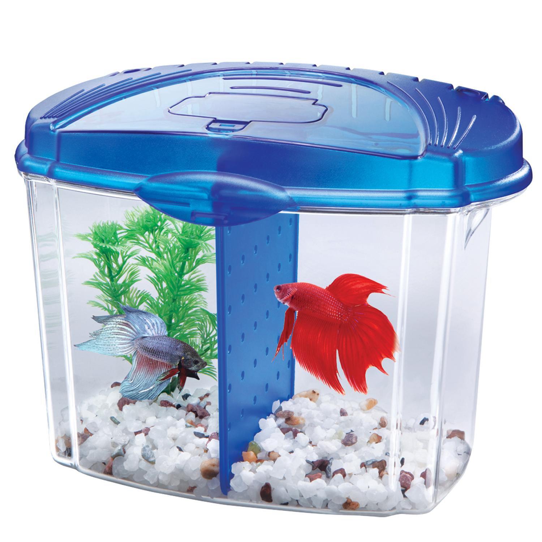 Petco's Dollar-a-Gallon Aquarium Fish Tank Sale Starts Sunday 6-26