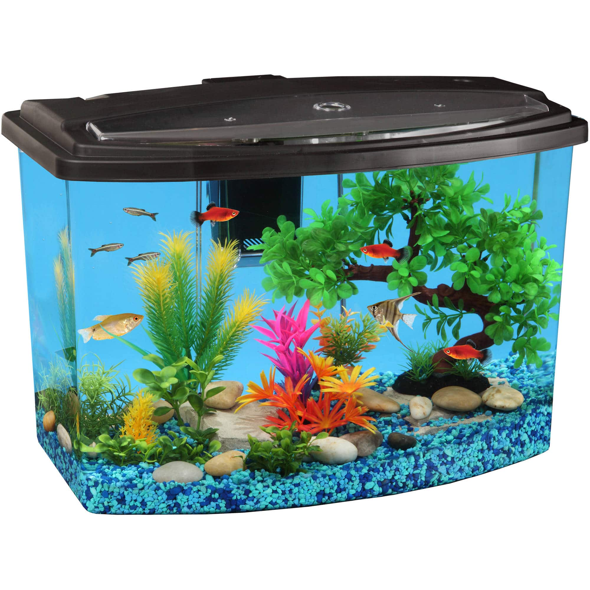 Hawkeye 7 Gallon Bow View Aquarium Kit - $41.50 + tax - F/S or Store Pick up
