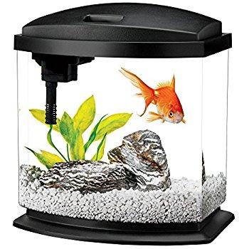 Black 2.5 Gallon Aqueon LED MiniBow Aquarium Starter Kits with LED Lighting at Amazon for $24.39